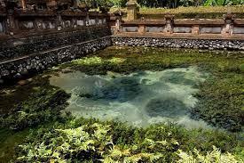 Tampaksiring Wisata Bali Tempat Paket Asal Nama Tirta Empul Pura