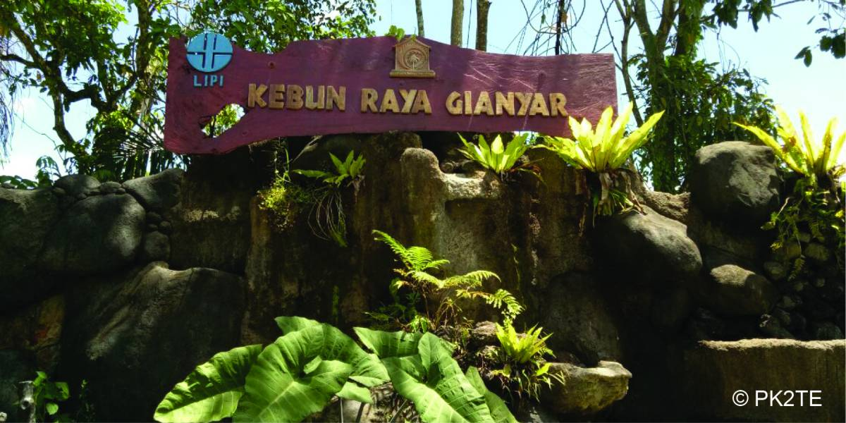 Tebing Kolam Taman Tematik Taru Pramana Usada Banten Bali Pulina