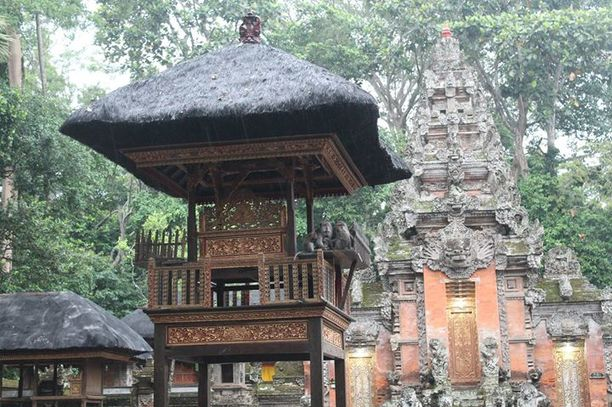 Sangeh Monkey Forest Ubud Indonesia Trover Sacred Sanctuary Kab Gianyar