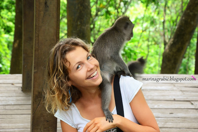 Tourist Visa Indonesia Click Picture Album Ubud Monkey Forest Kab