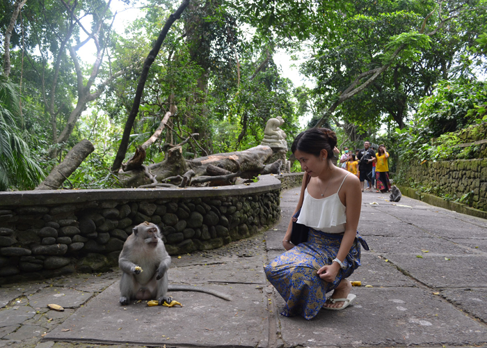 Water Rafting Monkey Forest Spa Bali Tour Guide Operator Ubud