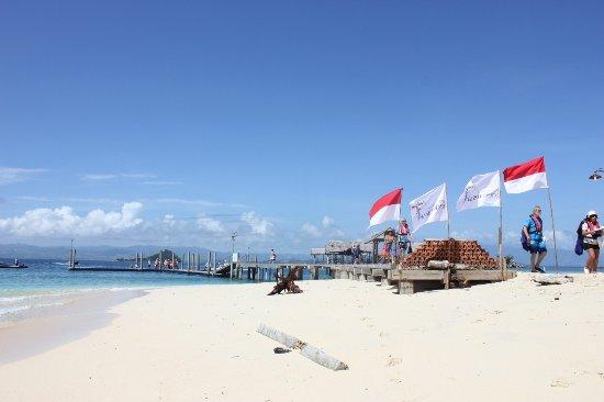 Food Picture Saronde Island Resort Gorontalo Tripadvisor Image Pulau Kab