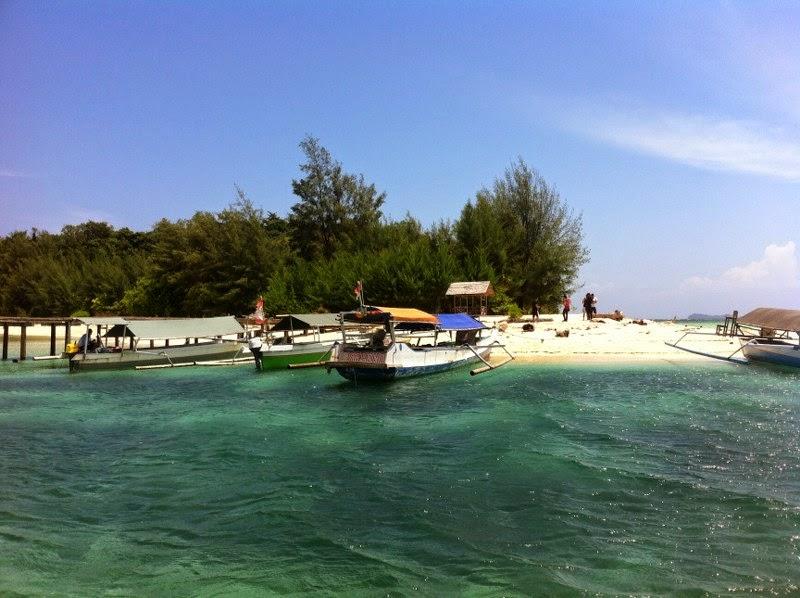 Gado Spesial Pulau Saronde Kab Gorontalo Utara