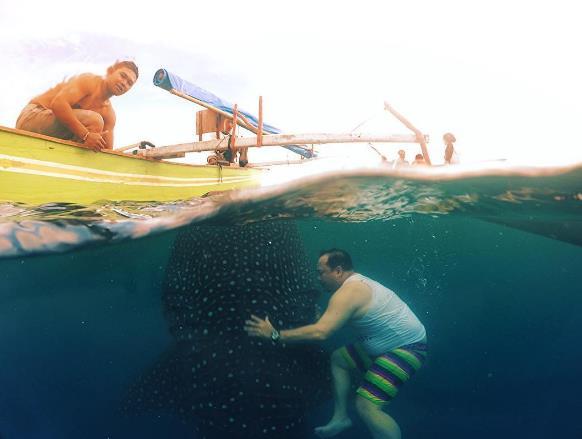 16 Tempat Wisata Gorontalo Wajib Dikunjungi Bahari Hiu Paus Pantai
