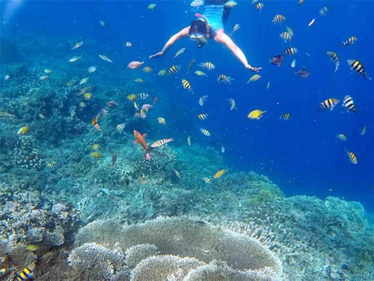 Amazing 10 Daftar Tempat Wisata Gorontalo Populer Pantai Pasir Putih
