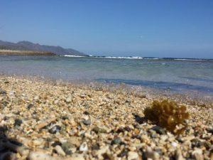 Daftar Tempat Wisata Provinsi Gorontalo Febe Sampurna Pantai Pasir Putih