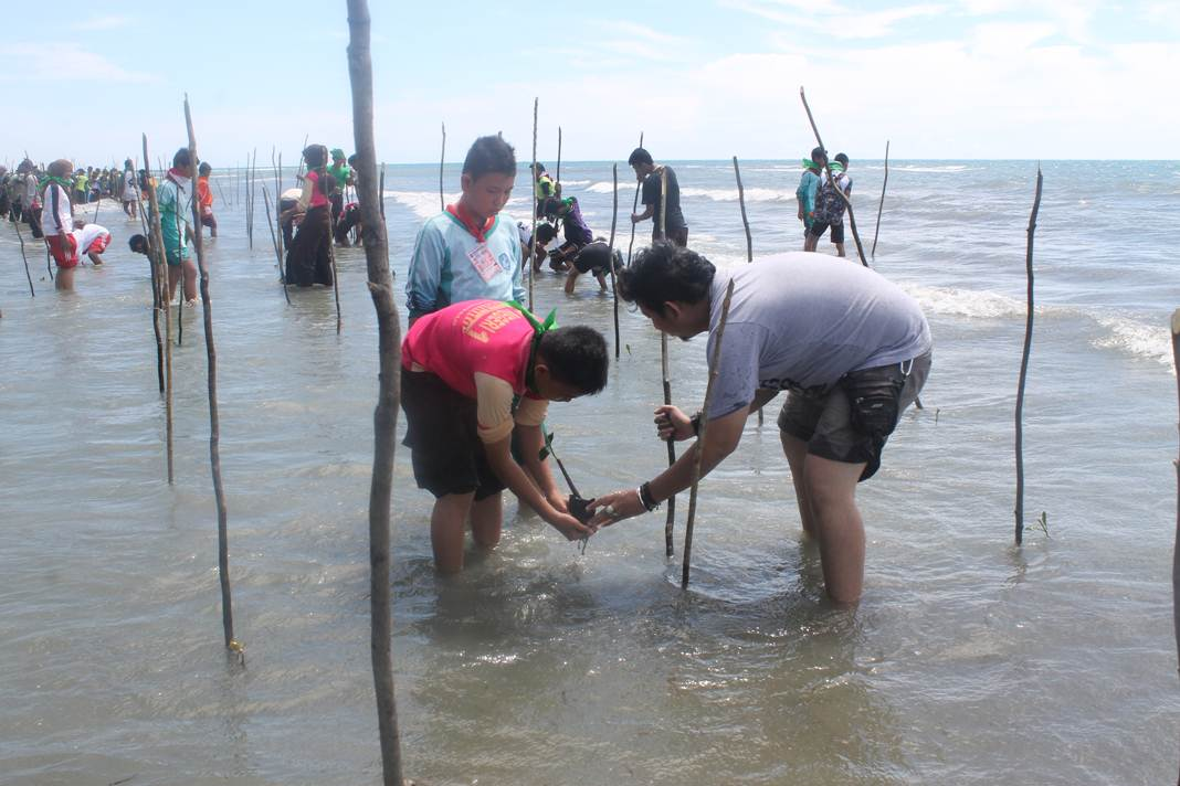 Aji Gorontalo Archives Degorontalo Salah Satu Penerima Program Mangrove Future
