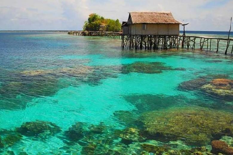 Berwisata Bawah Laut Teluk Tomini Pinkkorset Kab Gorontalo