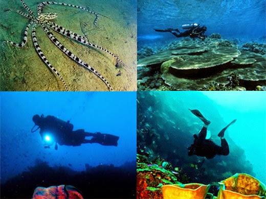 Coast Paradise Pantai Olele Teluk Tomini Gorontalo Kab