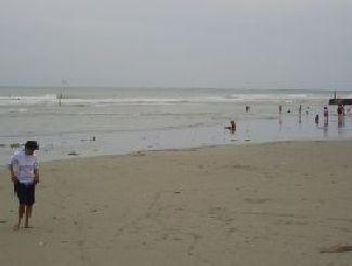 Pantai Delegan Wisata Gresik Setengah Hati Homeland Gampang Terpengaruh Omongan