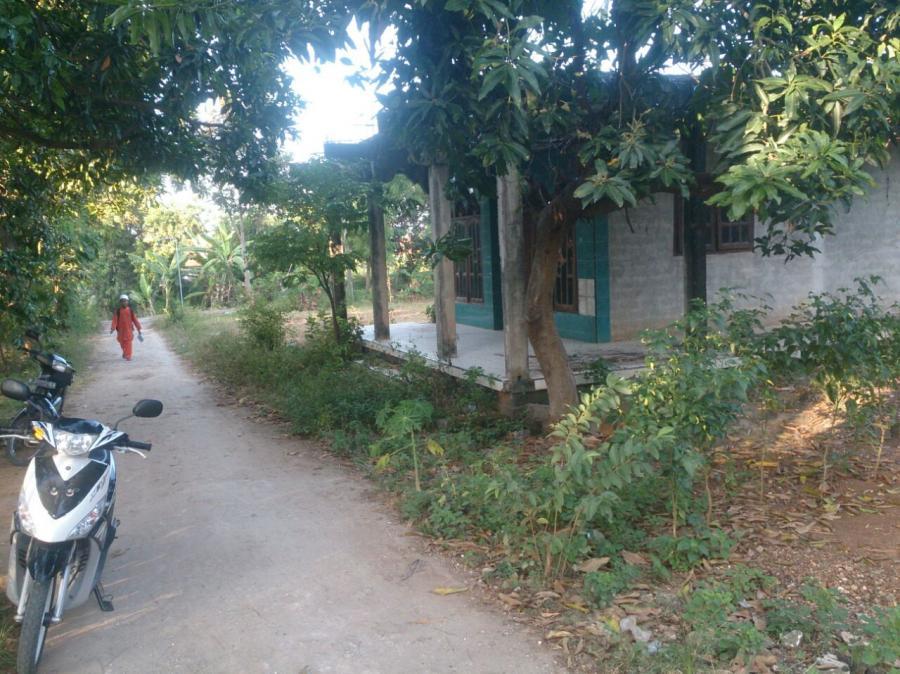Rumah Dijual Murah Gresik Sidorejo Panceng Dekat Siap Huni Wisata