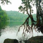 Pantai Kuburan Panjang Bawean Cektravel Info Pulau Noko Danau Kastoba