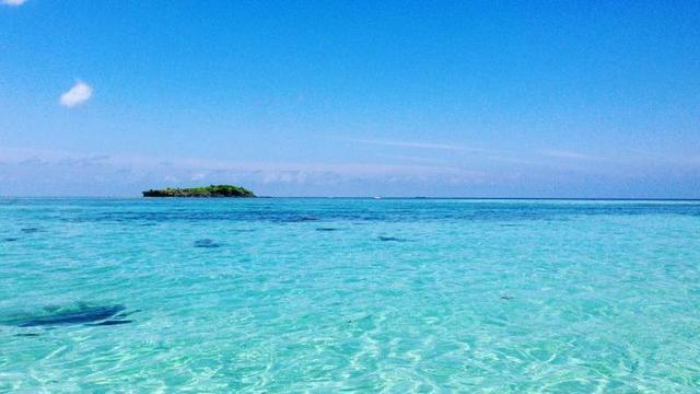 9 Pesona Wisata Gresik Lunas Kamu Jelajahi Libur Birunya Laut