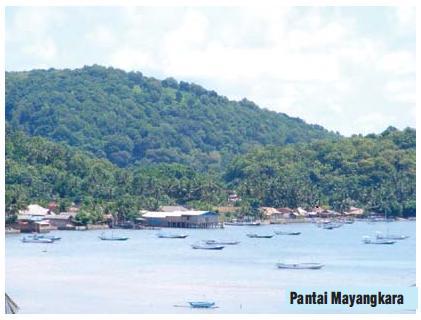 Dinas Pariwisata Gresik Br Kembangkan Wisata Bawean Media Pantai Mayangkara