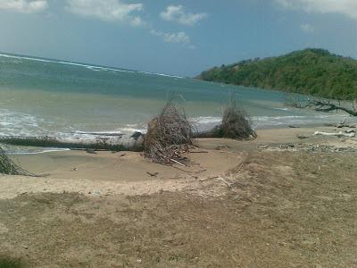Pantai Mayangkara Abrasi Media Bawean Abarasi Kab Gresik