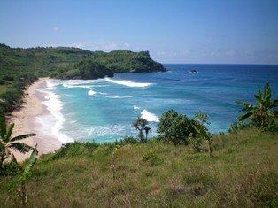 Permata Asri Tapi Pantai Jolosutro Tidak Dilengkapi Fasilitas Umumnya Lokasi