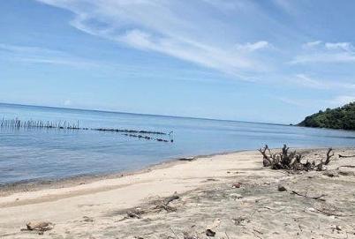 Pesona Keindahan Wisata Pantai Mayangkara Gresik Daftar Tempat Google Maps