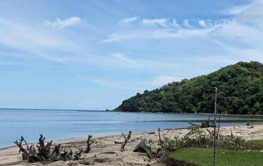 Pesona Keindahan Wisata Pantai Mayangkara Gresik Daftar Tempat Kab