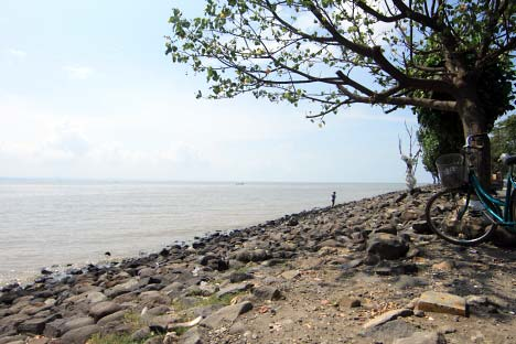 Tempat Wisata Gresik Ameliaputriutami Alam Pantai Mayangkara Kab