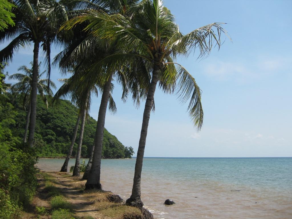 World Pulau Bawean Mutiara Terpendam Tengah Laut Jawa Pantai Mayangkara