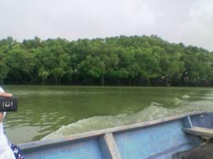 Mataseger Gresik Dunia Dinding Lodewijk Sepanjang Perjalanan Menyusuri Muara Sungai