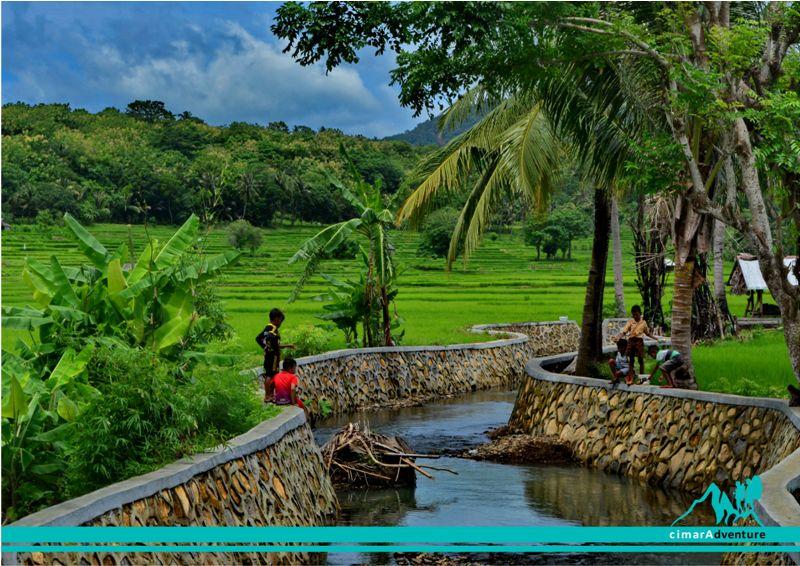 Bawean Island Gresik Cimara Adventure Pulau Jawa Timur Previousnext Penangkaran