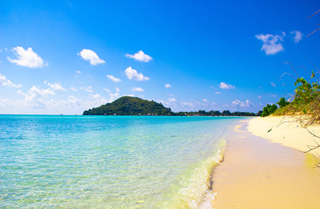 Pulau Cantik Bernamakan Bawean Momotrip Journal Penangkaran Rusa Kab Gresik