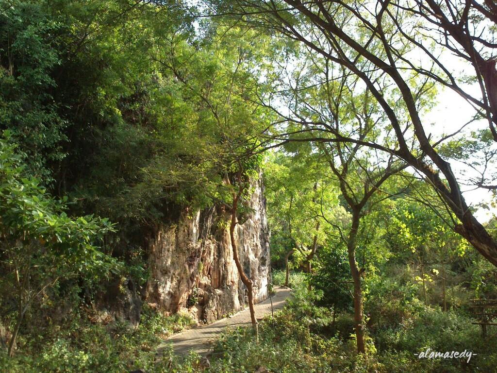 Makam Sunan Kalijaga Bukit Surowiti Gresik Alamasedy Selama Tahu Berada