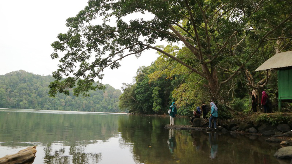 Danau Luas Tengah Pulau Bawean Acehimagecom Photo Journalist Foto Istimewadanau