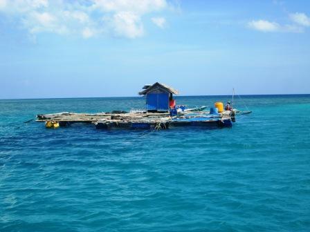 Pemerintah Kabupaten Gresik Promosikan Wisata Bawean Jajaran Pemkab Mengoptimalkan Pengelolaan