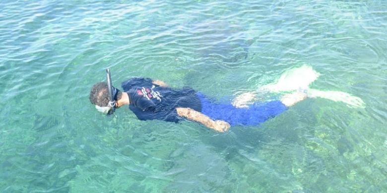 Wisata Bawean Keindahan Taman Laut Hingga Binatang Endemik Pulau Kab