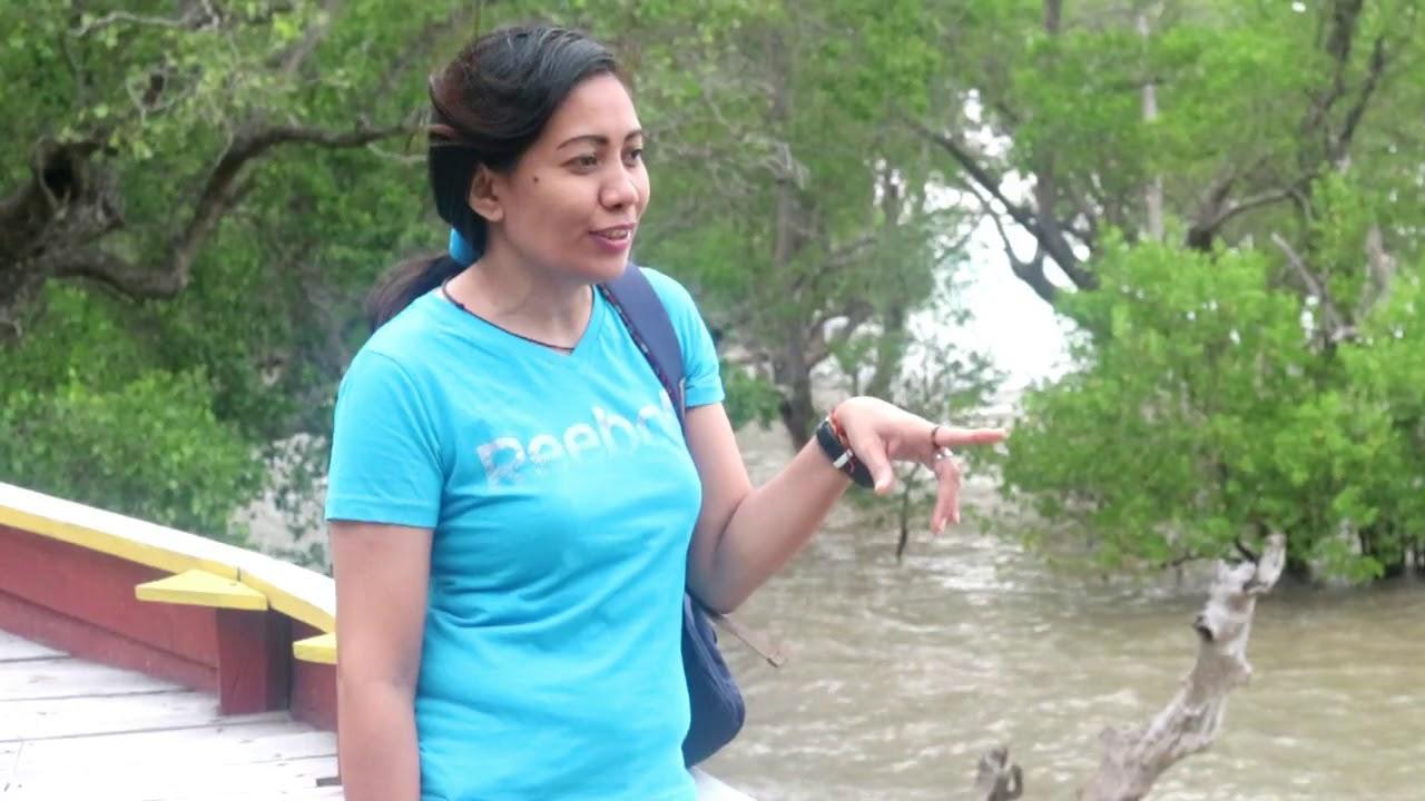 Ekowisata Hutan Mangrove Vlog2 Youtube Pusat Banyuurip Kab Gresik