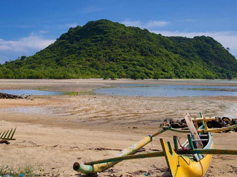 Kab Gresik Pusat Mangrove Banyuurip