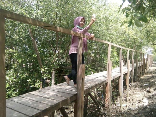 Mangrove Banyuurip Ekowisata Gresik Kabargresik Pusat Kab
