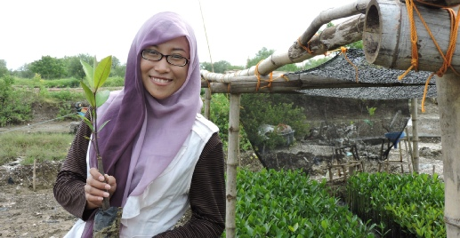 News P Bisnis Ekowisata Mangrove Ala Kelompok Nelayan Banyuurip Gresik