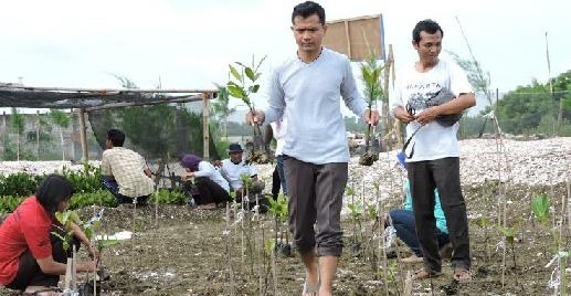 News P Ekowisata Mangrove Ujung Pangkah Gresik Pusat Banyuurip Kab