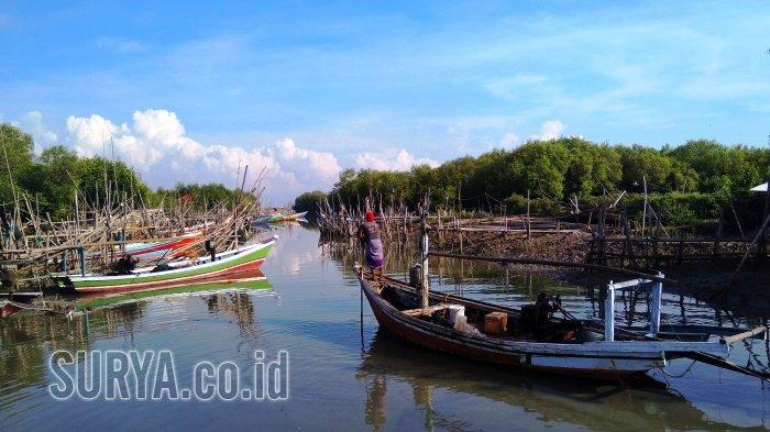 Potret Kehidupan Nelayan Dermaga Mangrove Ujungpangkah Gresik Pusat Banyuurip Kab