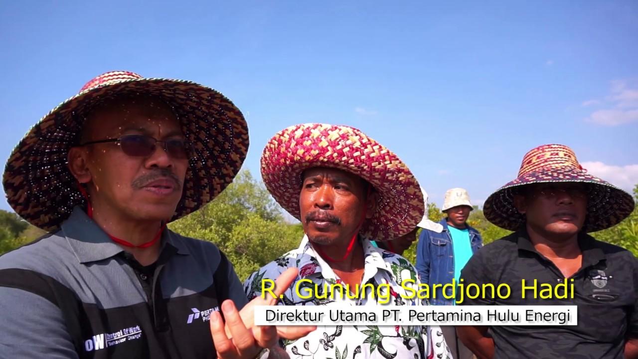 Profil Taman Pendidikan Mangrove Labuhan 2017 Youtube Pusat Banyuurip Kab