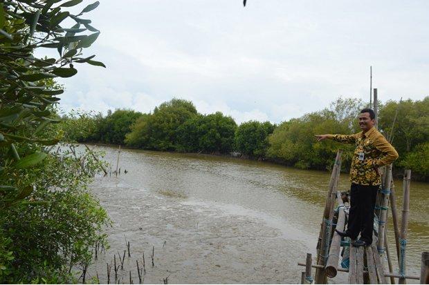 Sindonews Kumpulan Berita Pariwisata Terbaru Halaman 2 Pusat Mangrove Banyuurip