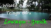 Wisata Mangrove Banyuurip Ujungpangkah Gresik Youtube 1 58 Pusat Kab