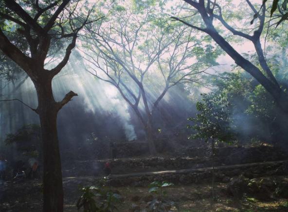 40 Tempat Wisata Gresik Memukau Pengunjung Goa Langsih Petik Buah