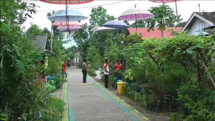Kampung Petik Buah Naga Diserbu Pengunjung Pojok Pitu Wisata Kebon