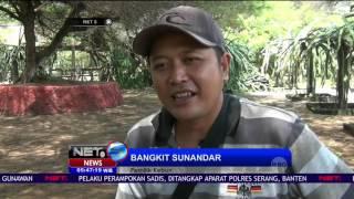 Kebun Naga Allnews Web Buah Kab Bantul Yogyakarta Diserbu Pengunjung