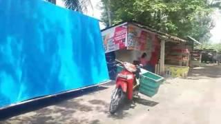 Kebun Naga Allnews Web Buah Kulon Progo Wisata Petik Kebon