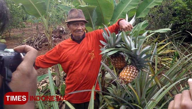 Sukses Kembangkan Wisata Mangrove Desa Pangkahwetan Jajaki Salah Satu Petani