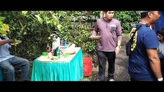Video Wisata Petik Buah Naga Aggro Jeruk Banyuwangi Kebon Agung