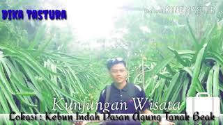 Video Wisata Petik Buah Naga Lombok Kebon Agung Kab Gresik