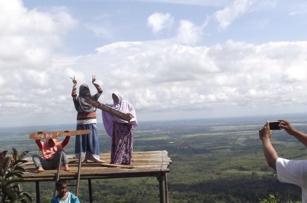 Jatipohon Indah Jpi Destinasi Wisata Favorit Kabupaten Berfoto Latar Pemandangan