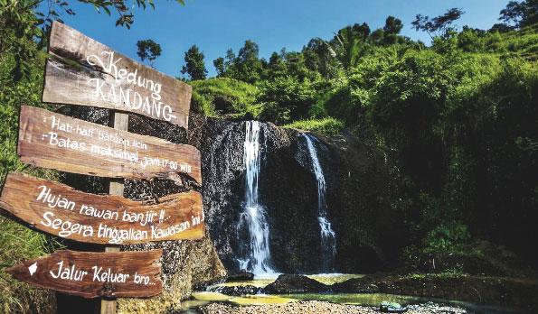 Air Terjun Kedung Kandang Gunungkidul Cantik Diantara Persawahan Kab