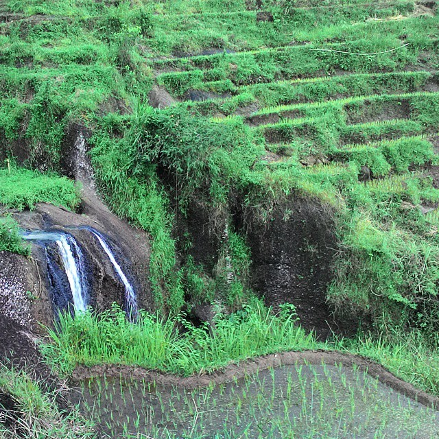 Wisata Yogyakarta Air Terjun Kedung Kandang Pesona Alam Pengelolaan Kelola